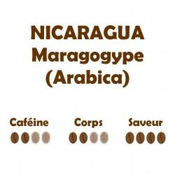 NICARAGUA MARAGOGYPE...